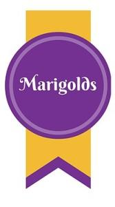 Marigolds Professional Cleaning Services Leeds - Ebony Directory - Black Business Directory